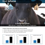 ABS0618-InFocus-page
