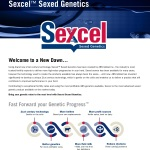 ABS0618-Sexcel-page