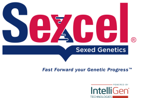 Sexcel-IntelliGen_stacked