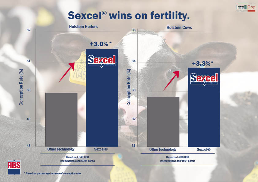 Sexed Semen - ABS Real World Data Final